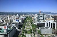 北海道 テレビ塔からの大通公園