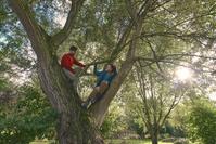 木登りする若いカップル