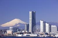 神奈川県 横浜 みなとみらいのビル群と富士山