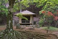 奈良県 新緑とヤマツツジ咲く西行庵 吉野山