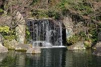 兵庫県 姫路 好古園御屋敷の庭