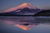 山梨県 山中湖と富士山朝焼け