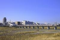 多摩川の土手から眺める京王線と富士山 東京都 府中市