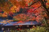 京都 嵯峨野 鳥居本