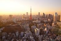 東京都 ミニチュア写真 夕暮れの東京タワー