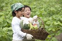 畑の中で収穫した野菜を持つ日本人の子供