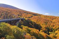 城ヶ倉大橋と紅葉