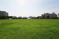 住宅街と芝生