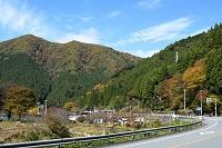 兵庫県 紅葉 国道29号線添えの集落