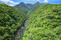鹿児島県 松峰大橋より安房川と明星岳 屋久島