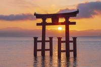 滋賀県 朝の白髭神社の鳥居