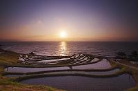 石川県 白米の千枚田の日没