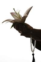 ユリの花を持つ女性