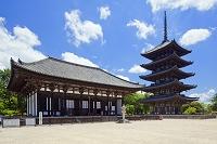 奈良県 興福寺 東金堂と五重塔