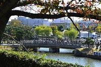 兵庫県 姫路 秋 姫路城から街並みを見る