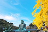 神奈川県 鎌倉市 大仏