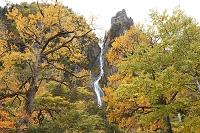 北海道  銀河の滝