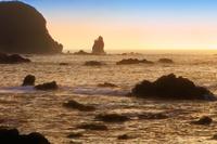 南伊豆海岸の朝