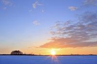 北海道 雪原の地平線からの日の出