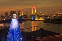 東京都 お台場メモリアルツリーとレインボーブリッジ