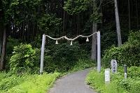 奈良県 高天彦神社参道の注連縄