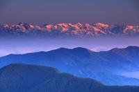 長野県 上田市 美ヶ原から望む朝日に染まる白馬連峰