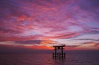 滋賀県 白鬚神社の朝と琵琶湖