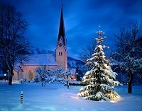 ドイツ バイエルン クリスマスツリー