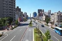 山手通り 緑化 電柱や電線の無い環境に配慮した道路