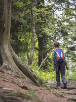 子供 ハイキング