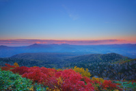 北海道 夕方の赤岳第一花園から望むナナカマドの紅葉と武利岳な...