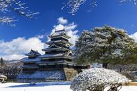 長野県 冬の松本城