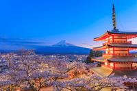 山梨県 新倉山浅間公園 桜と忠霊塔と富士山