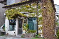 函館の蔦に覆われた店舗