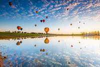 オーストラリア ハンター・バレー 朝の気球