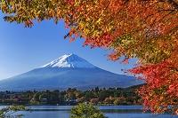 山梨県 紅葉の河口湖と富士山
