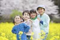 菜の花畑で並んで笑う子供