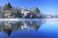 北海道 屈斜路湖の霧氷