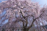長野県 飯田市