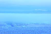 北海道 朝霧と霧氷の釧路湿原