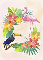 南国の花と鳥