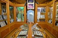 埼玉県 小川町 カタクリとオオムラサキの林 展示館