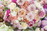 アプリコット色のバラとスカビオサのブーケ
