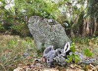 バヌアツ エレトカ島(Eretoka) ロイ・マタの墓