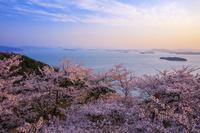 岡山県 桜咲く王子ヶ岳より瀬戸内海 竪場島夕景