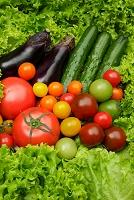 夏野菜の集合写真