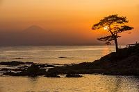 神奈川県 秋谷立石より富士山と夕日と松