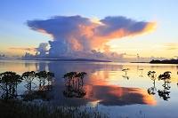 沖縄県 石垣島 名蔵湾の夕景