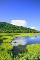 群馬県 上田代の池塘と青空に浮かぶ雲