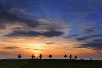 北海道 メルヘンの丘 夕日